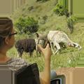 Viajes a Machu Picchu Peru - Agencia de viajes